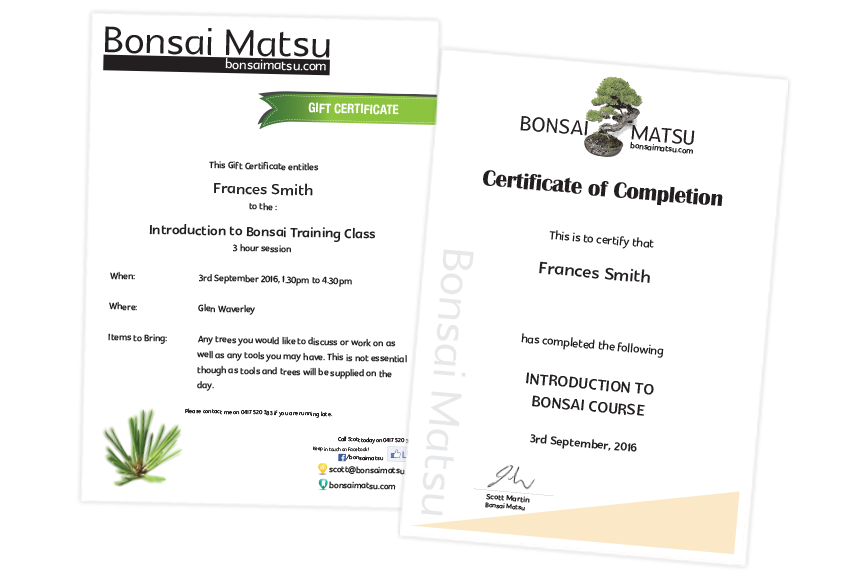 Bonsai Certificate